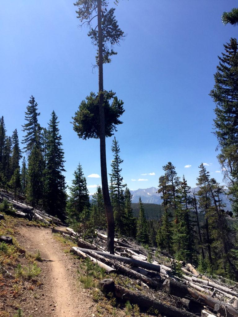Mountain Bike Trails at Keystone Resort CO