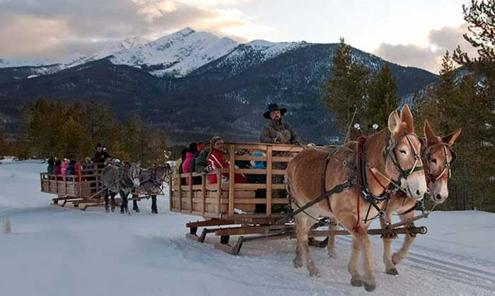 Dinner sleigh rides in Summit County CO at Two Below Zero