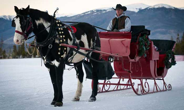 Sleigh Rides with Two Below Zero